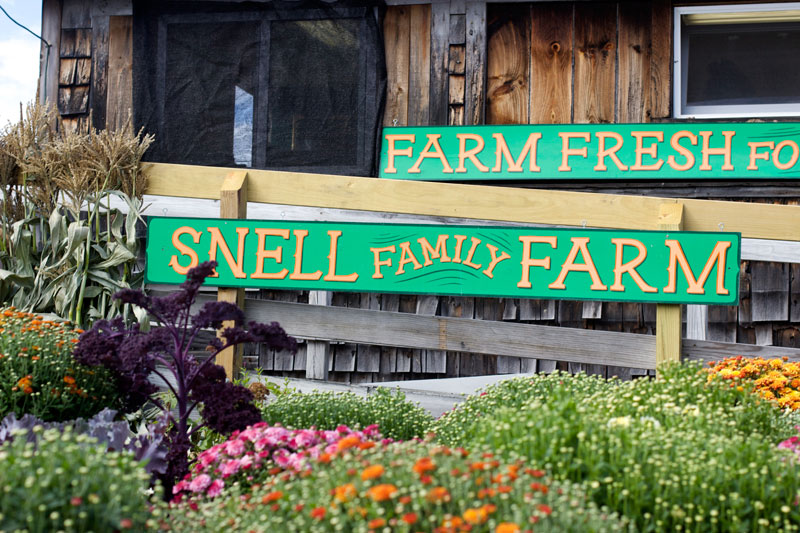 snell family farm maine